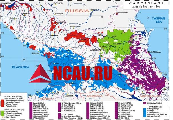 Автохтонные народы Северного Кавказа